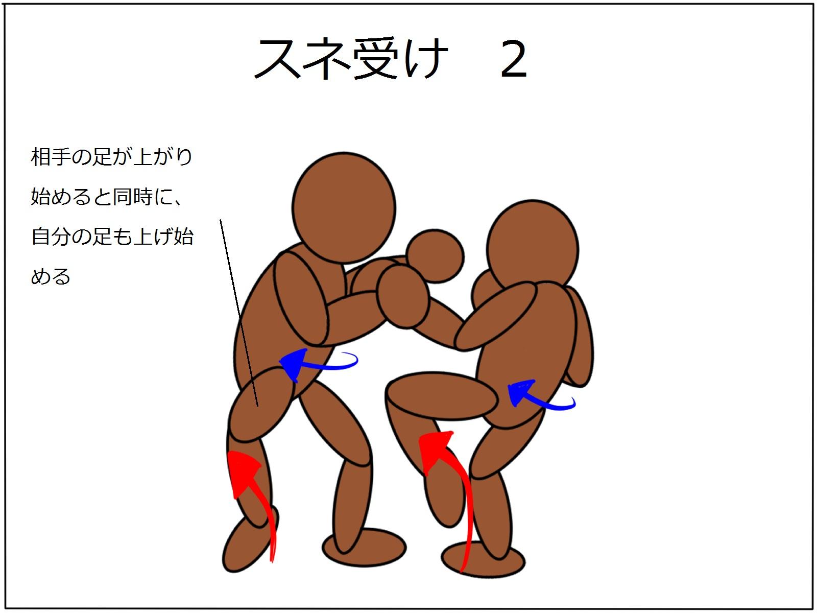 極真空手|【基本】下段蹴りに対するスネ受け方法を解説します