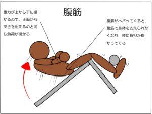 極真空手|【腰痛の原因】組手やってて腰痛める人は体幹が弱い事が原因!