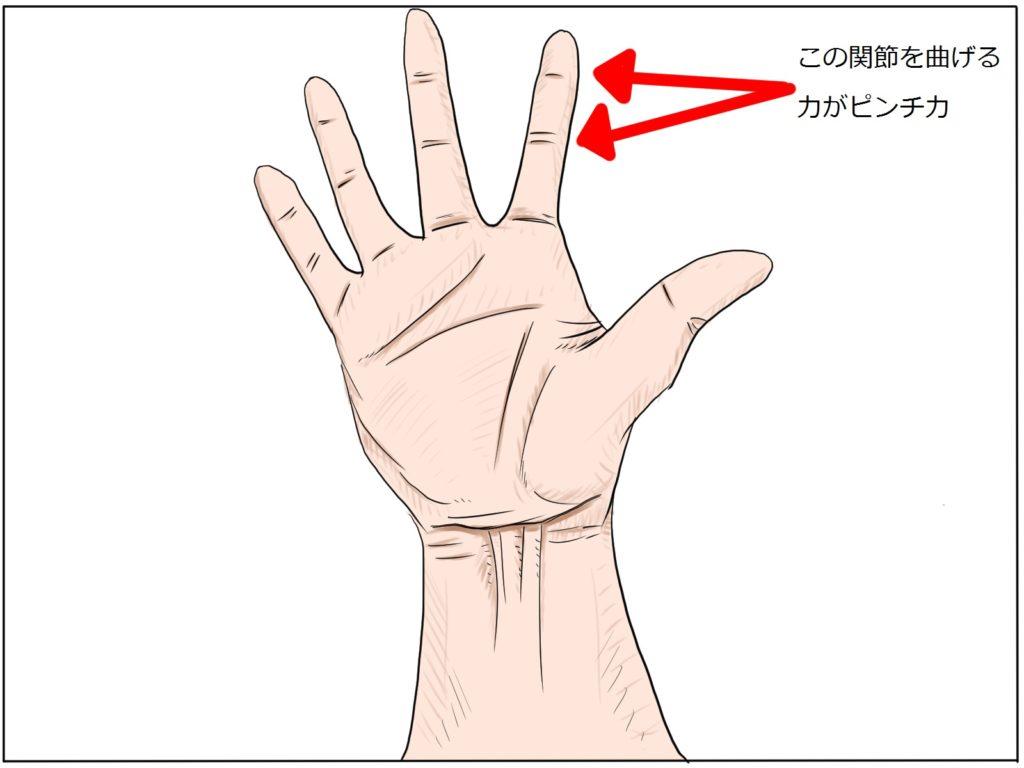極真空手|指立て伏せでは握力は鍛えられず、試合や組手で効果は出ない